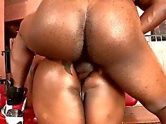 Chunky ebony bitch ass drilled with a huge cock