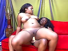 Luscious lola and oshua bare big bouncy boobs