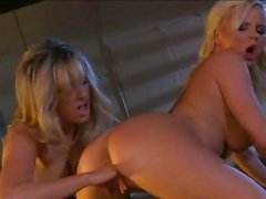 Lusty naked Bree Olson feels the pleasure of getting thumped in her tight twat