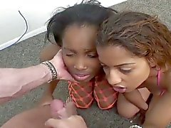 Two young hot ebony babes sucks one white cock